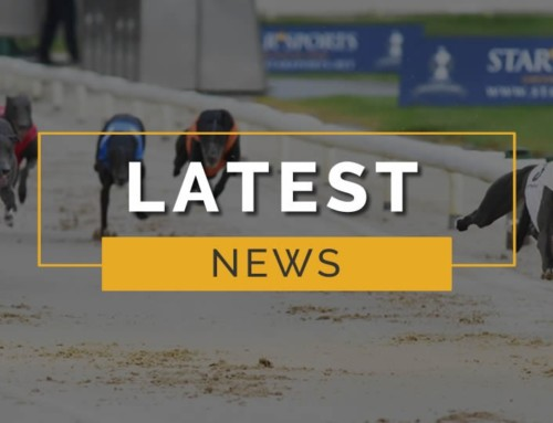 St Legers and Shelbourne Round Up
