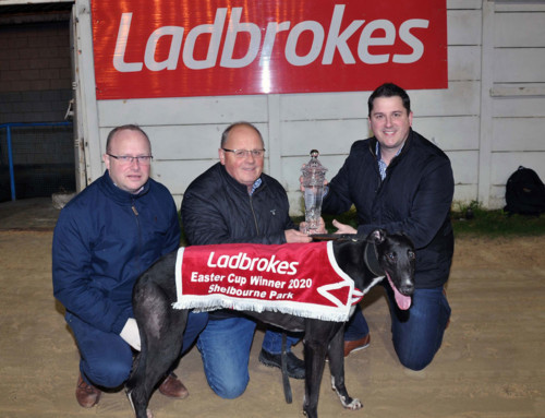 Wolfe – 2020 Ladbrokes Easter cup Champion